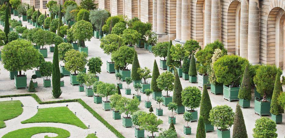 Jardin du roi soleil boutique en ligne du ch teau de - Jardin du chateau de versailles gratuit ...